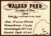 Survey of Walden Pond, 1846