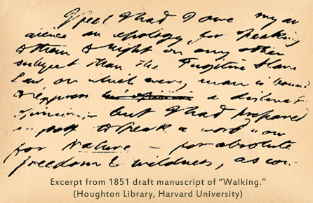 """Manuscript page from """"Walking,"""" by HD Thoreau"""